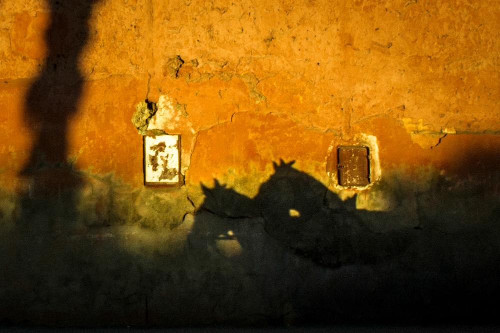 Marrakech / 14